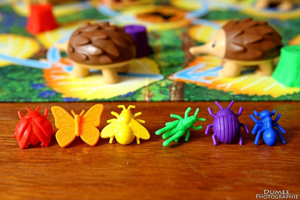 boardgame, dumeeple, echidna shuffle, wattsalpoag, kris gould,